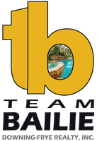 Team Bailie with Downing-Frye Realty, Inc.